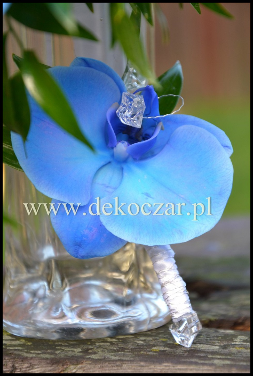 14 (2) florysta olesno